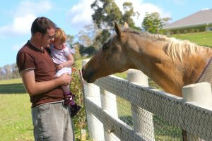 Father & child greeting a horse at the fence